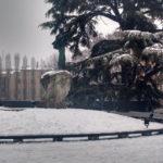 neve-parma-3-marzo-2018-2